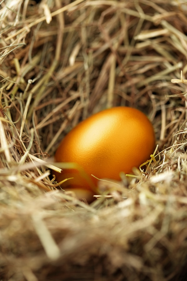 SMSF accountant melbourne nest egg